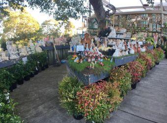 Poyntons Nursery Essendon