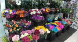 Tender Petals Florist Sanctuary Lakes