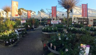 Bay Road Nursery Sandringham, Melbourne