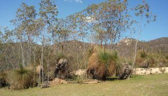 Tidbinbilla Nature ReserveCanberra