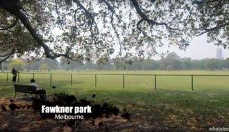 Fawkner park Melbourne