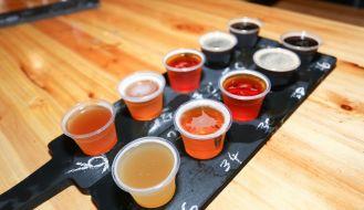 GABS 2015 Beer Festilval Highlights & Photos