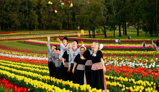 Tesselaar Tulip Festival Melbourne 2016