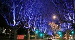 St Kilda Road Southbank Walk Melbourne