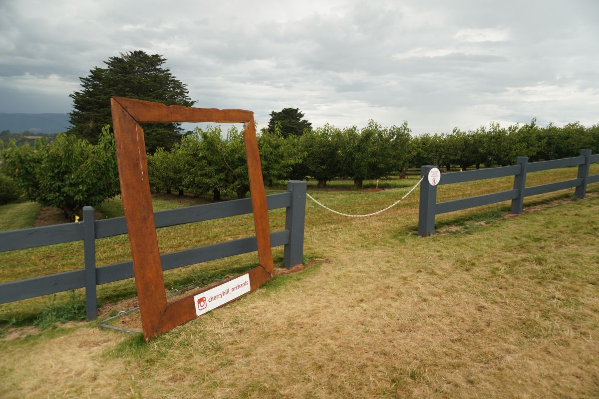 cherryhill orchards wandin east melbourne13