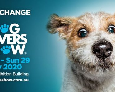 dog lovers show melbourne 2020