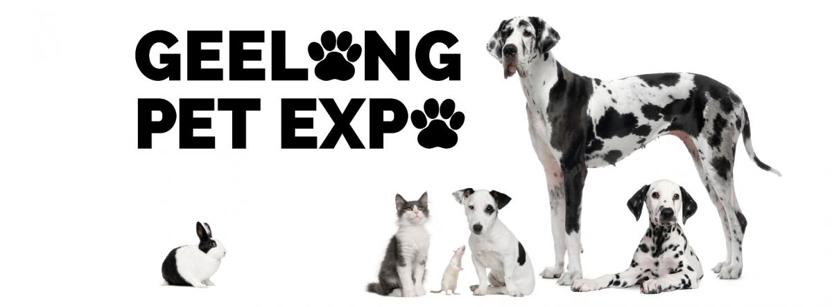 geelong pet expo 2016
