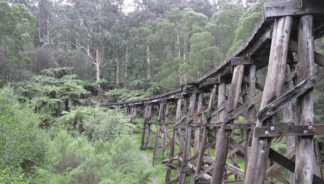 puffing billy railways experience melbourne
