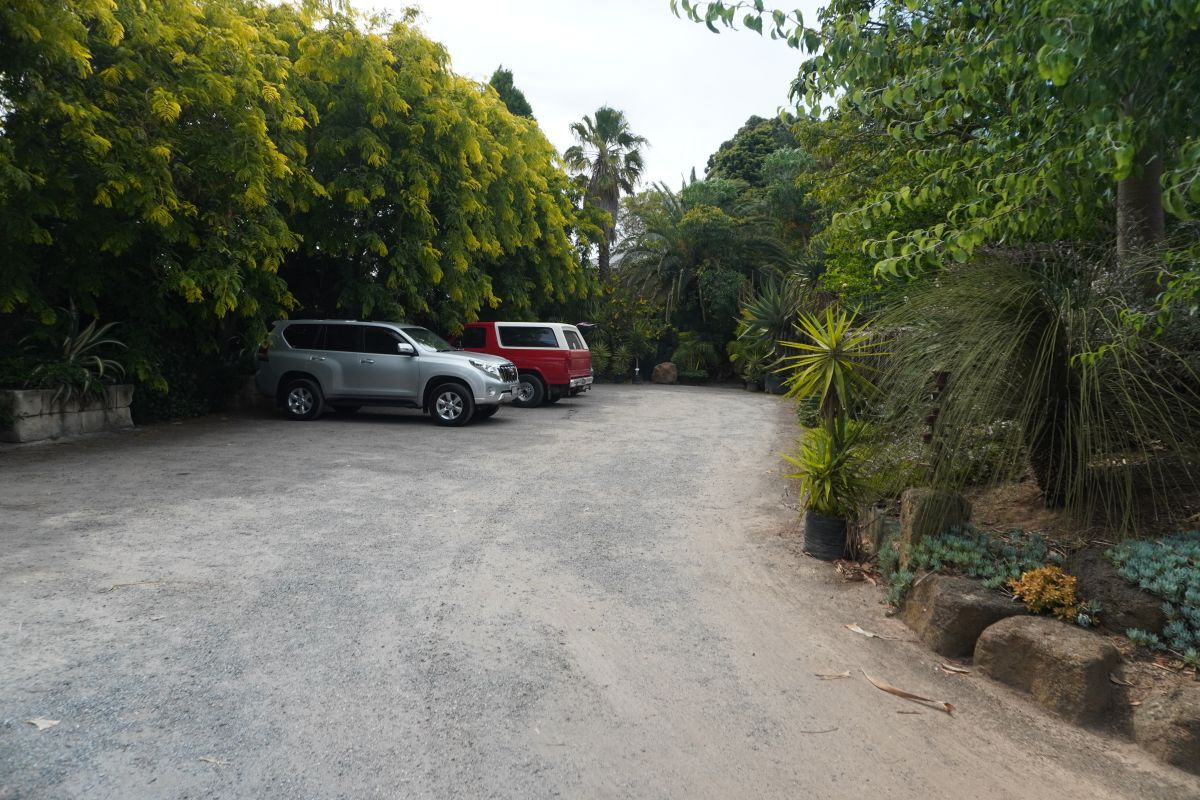 roraima nursery lara2 2